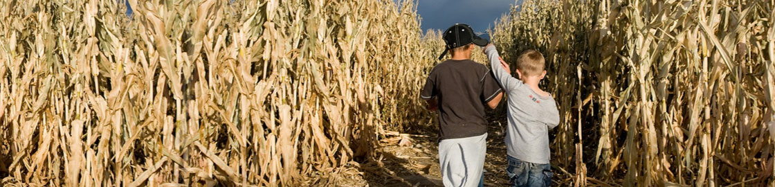 Giant Corn Maze Virgina - Get lost in the maze!